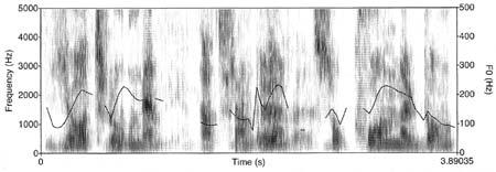 Röstspektrogram av frasen